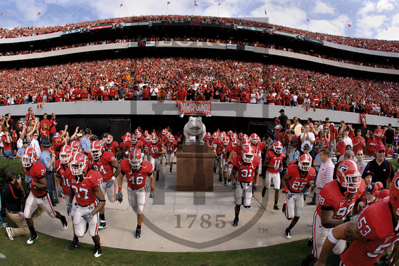 UGA Football Dawg Pound
